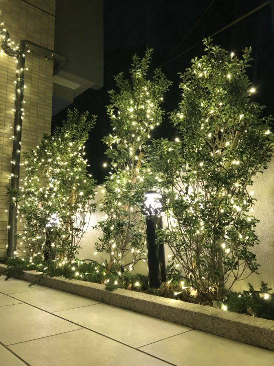 福岡のゴルフ練習場、スイングワン の入り口にクリスマスがやってきました。